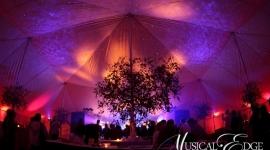 Des Moines Tent Lighting